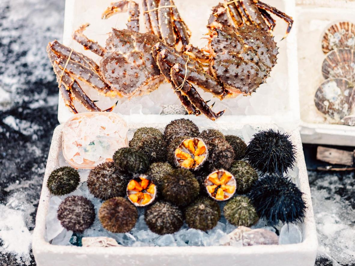 Sapporo es famoso por su gran variedad de ricos cangrejos