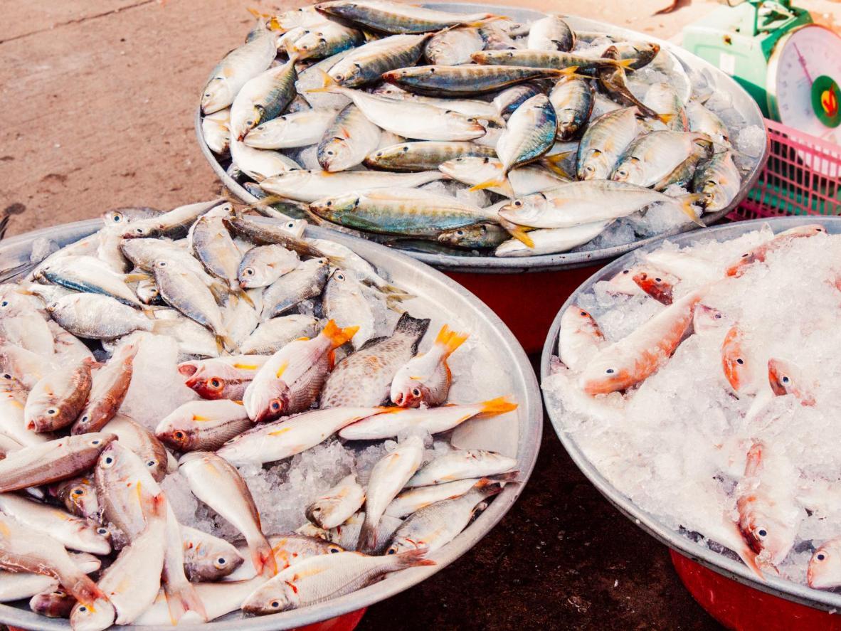 Los restaurantes frente al mar de Mui Ne sirven el pescado más fresco