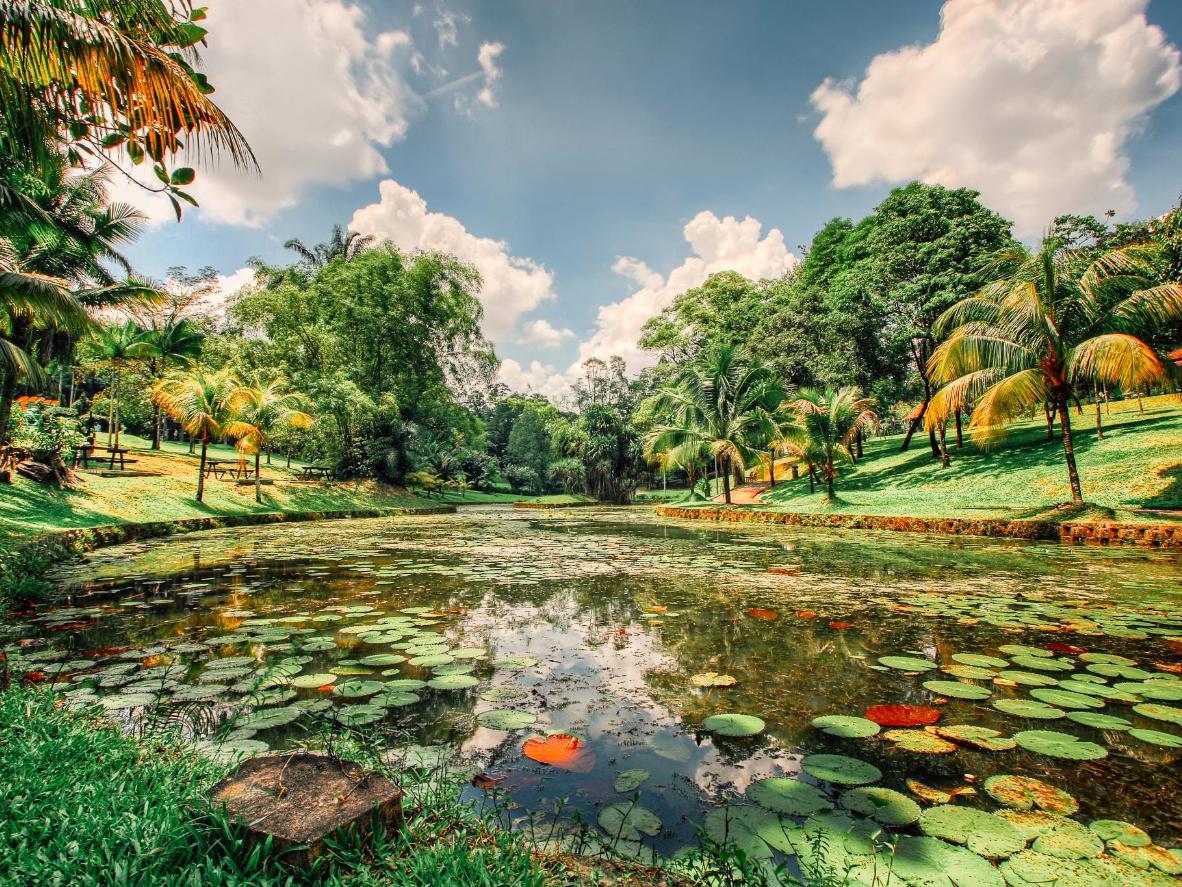The Perdana Botanical Gardens in Kuala Lumpur