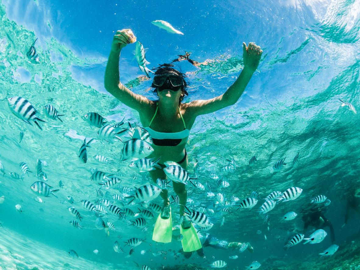 Swim and snorkel among tropical fish in crystal-clear waters