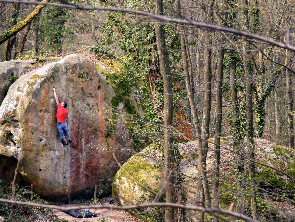 Centuries of bouldering in Fontainebleau, France