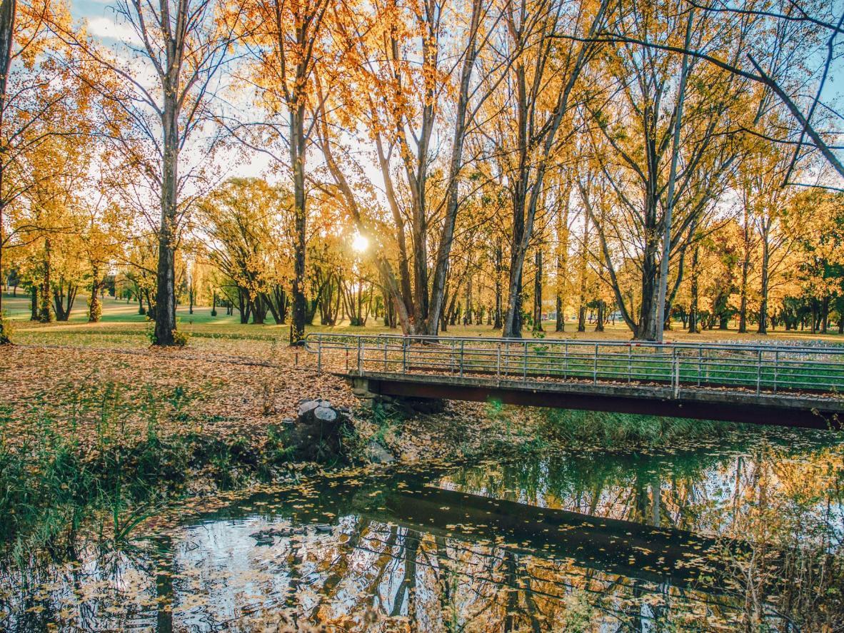 Autumn comes to Armidale, Australia