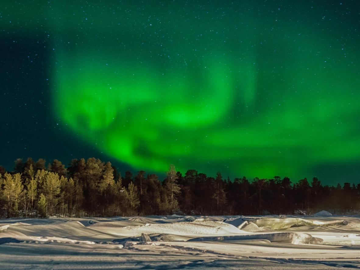 Go midwinter and see reindeer in Inari, Finland
