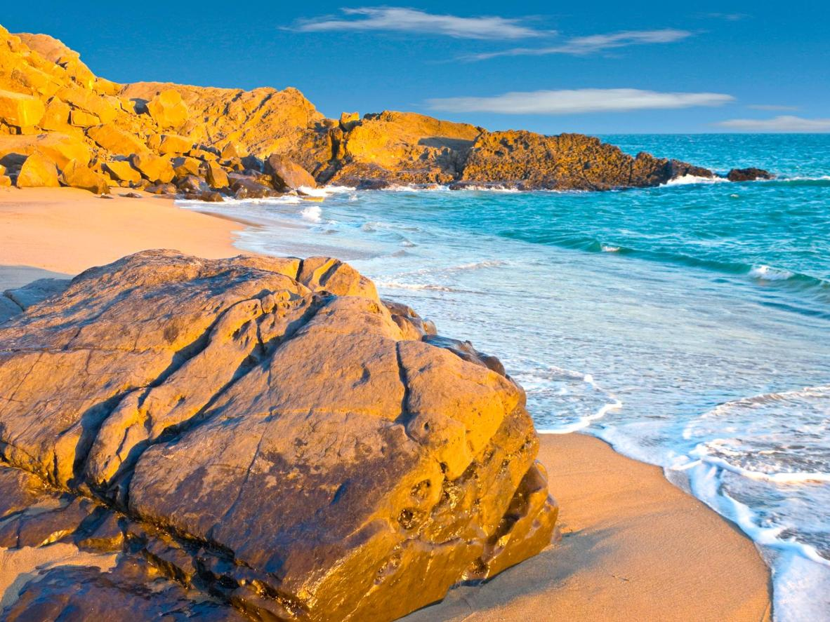 Enjoy beautiful beaches and watch wildlife in Oxnard