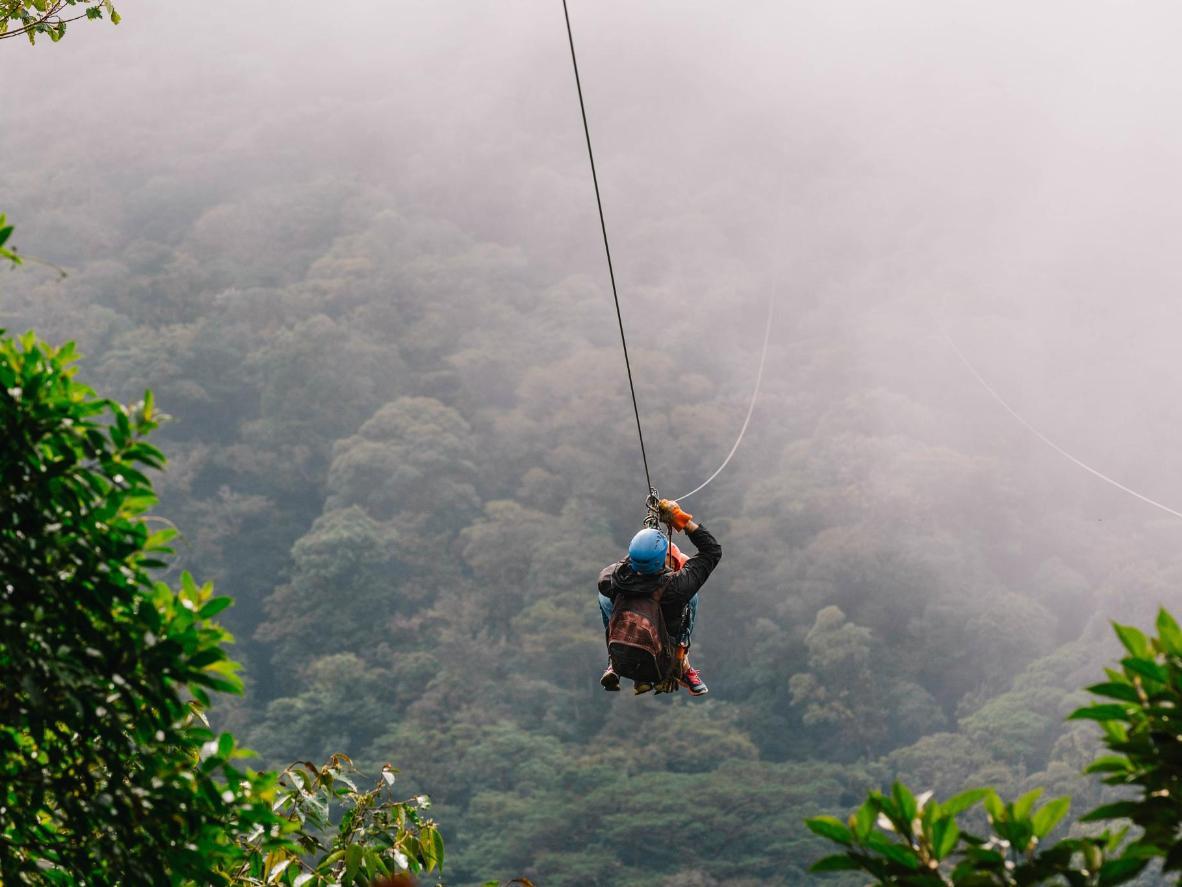 Glissez à pleine vitesse à travers l'épaisse canopée du Costa Rica