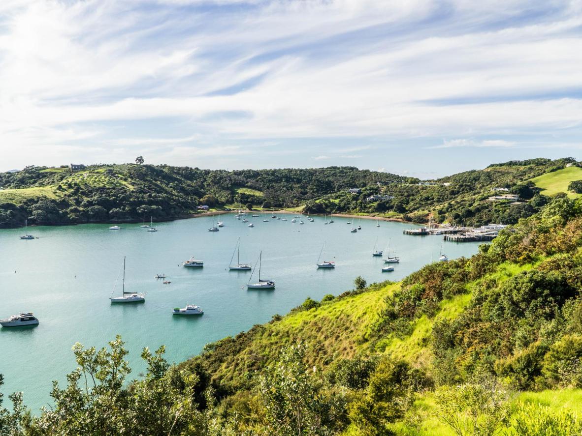 L'île Waiheke est une destination de choix pour pratiquer la tyrolienne en Nouvelle-Zélande