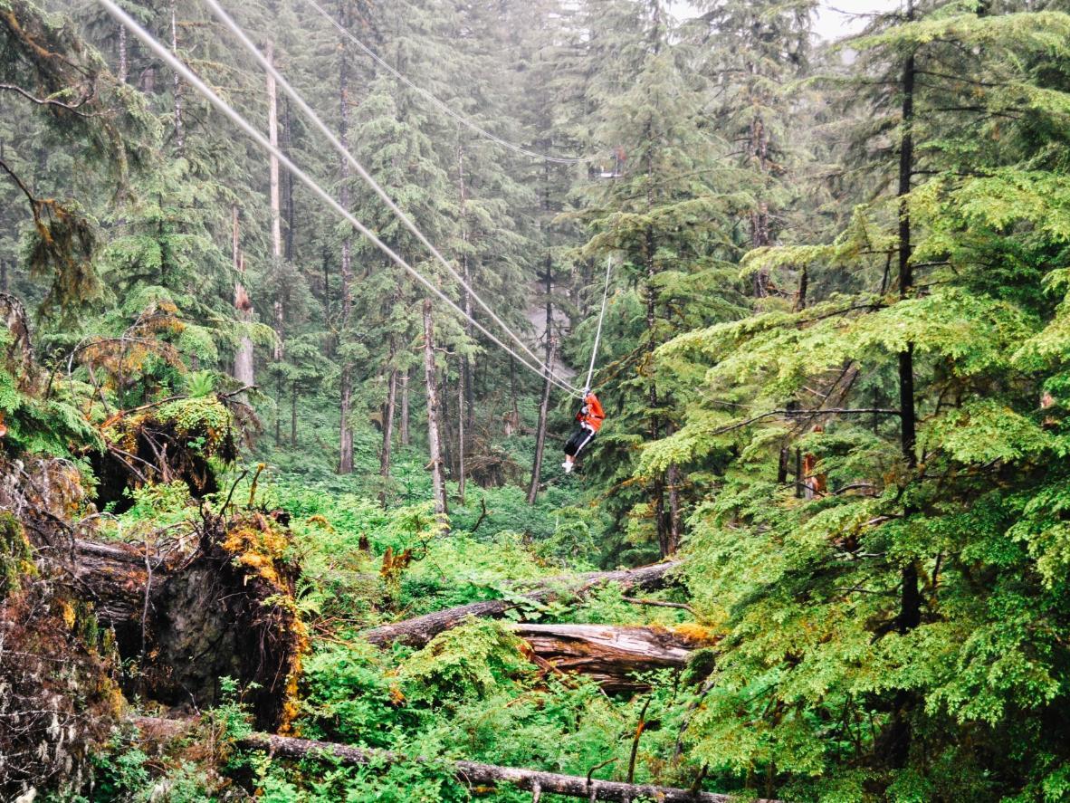 Traversez la forêt nationale de Tongass, en Alaska