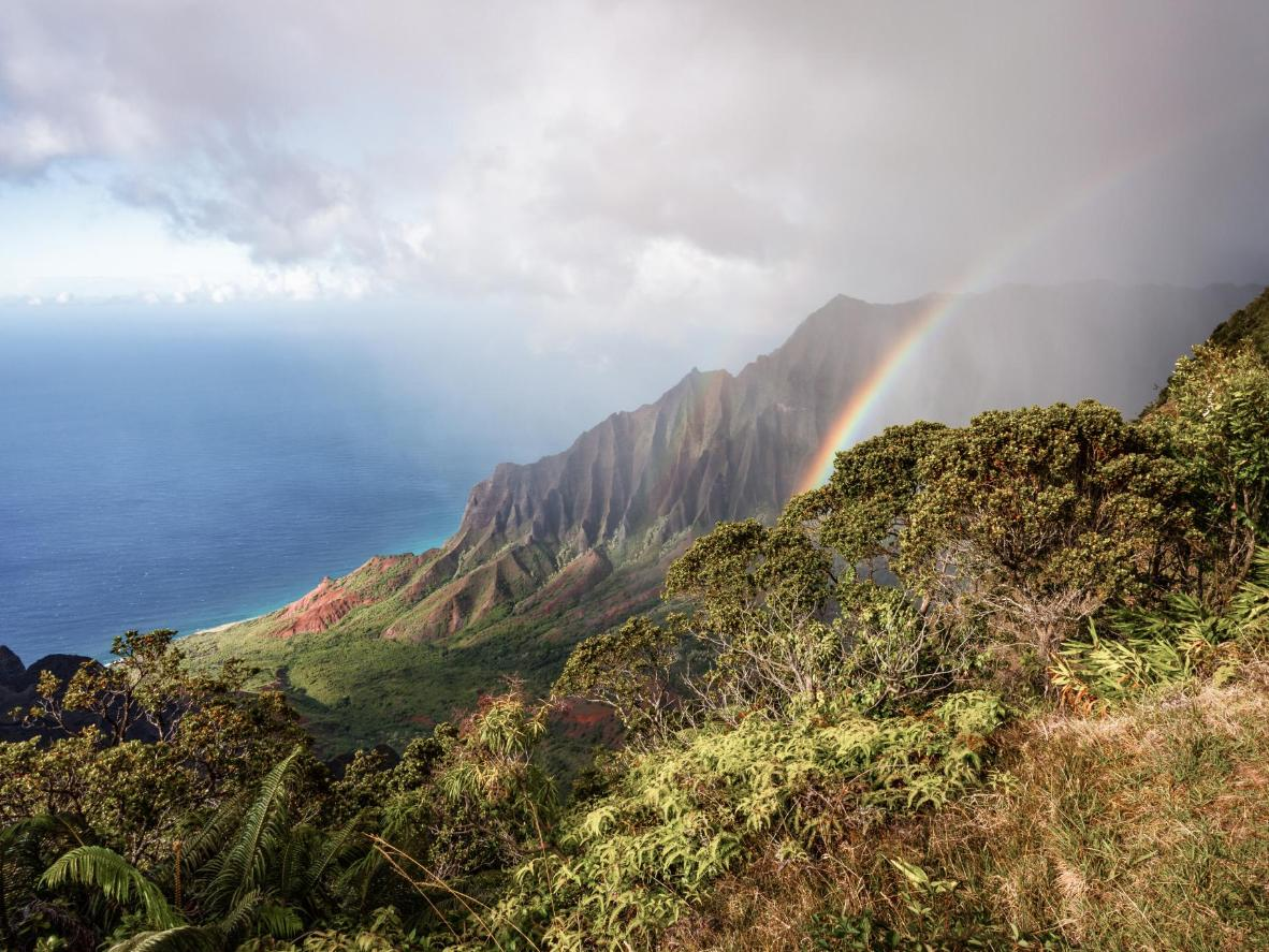 Adéntrate en el valle de Kalalau, en Hawái, para disfrutar de unas vistas espléndidas de la selva y el océano