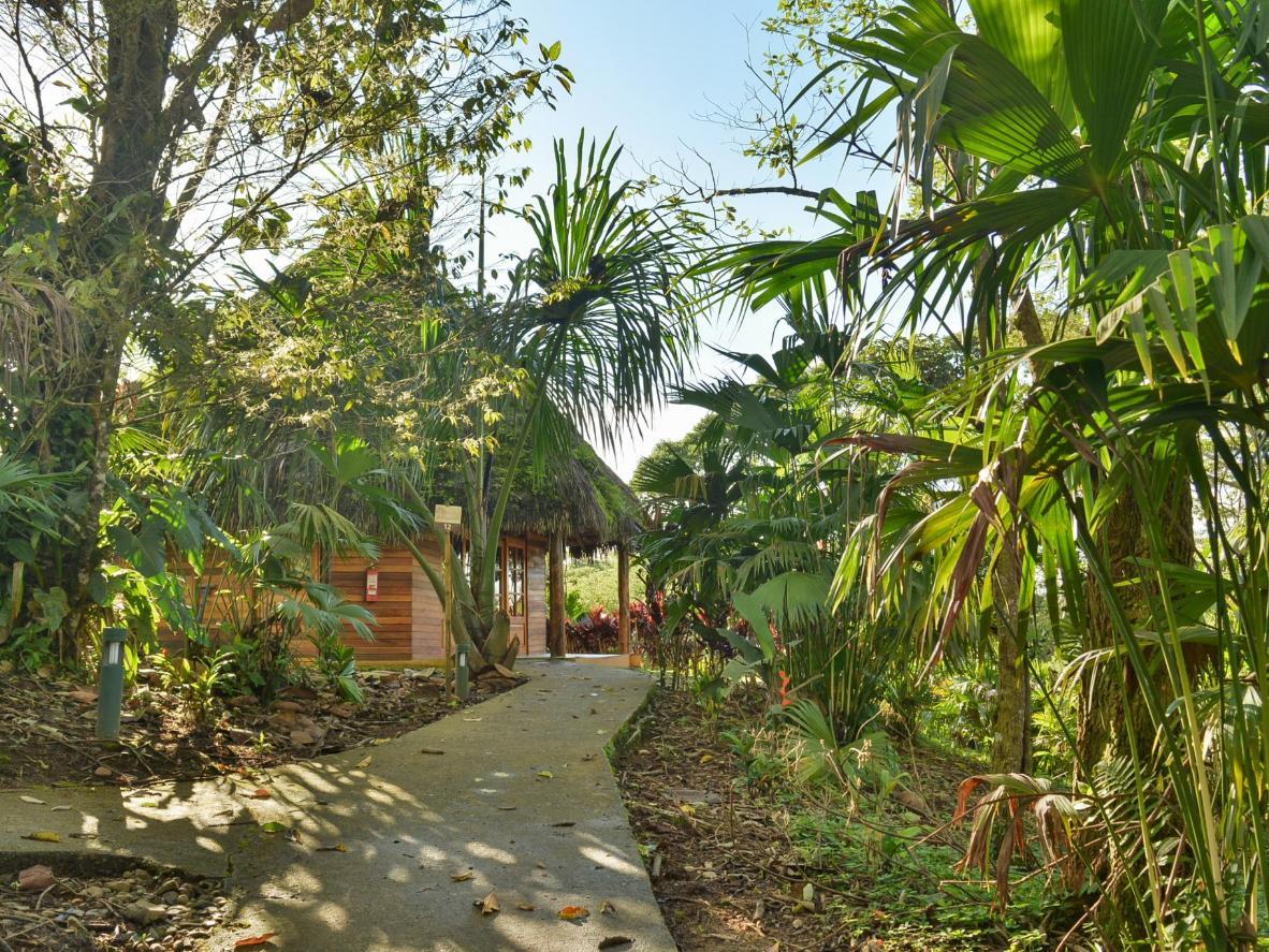 The Huasquila Amazon Lodge in the Amazon