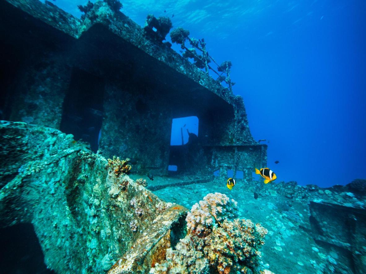 A shipwreck off the shore of Sharm el-Sheikh