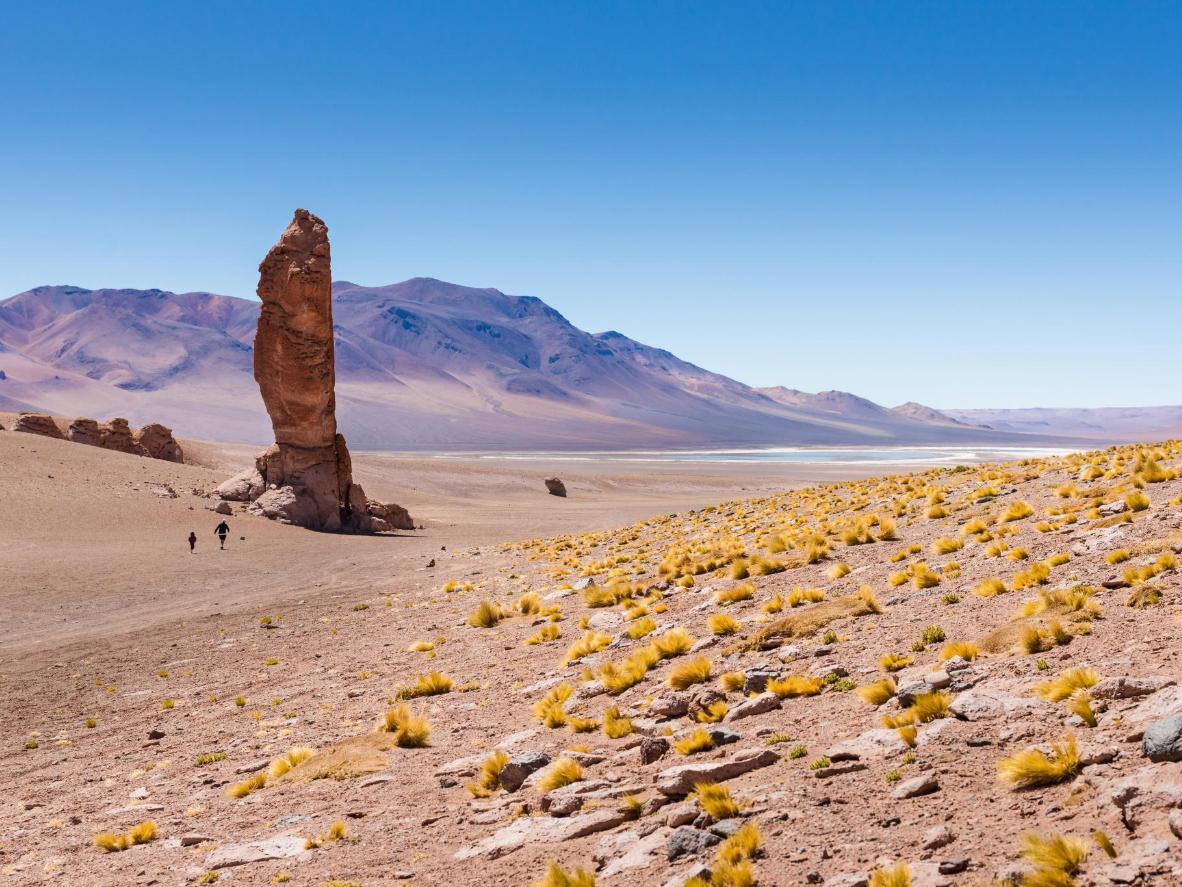 The Los Flamencos National Reserve