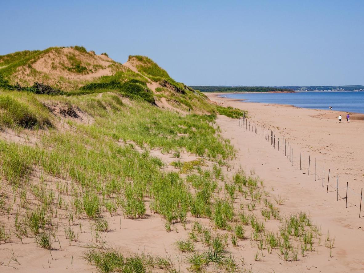 Explore miles of golden sand at Cavendish Beach