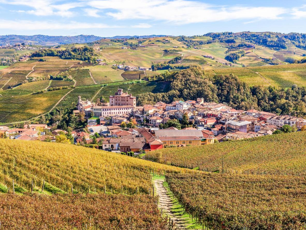 A view from the vineyards surrounding Barolo