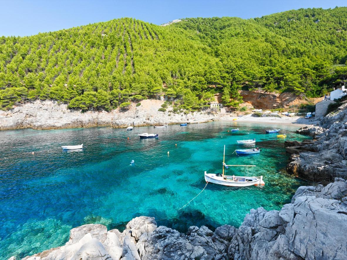 Vue sur Mljet, en Dalmatie