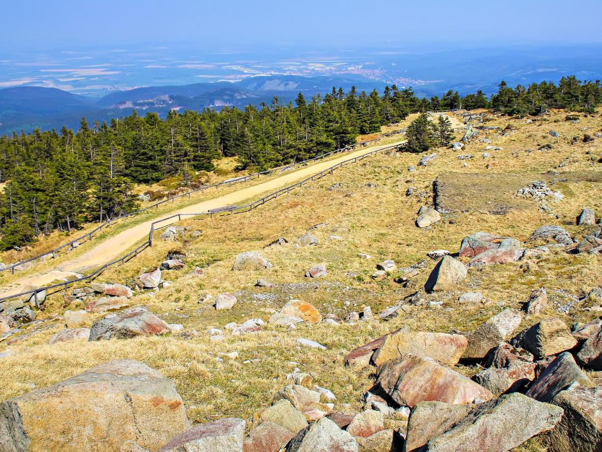 Enjoy far-reaching views of the German countryside from atop the Harz mountains