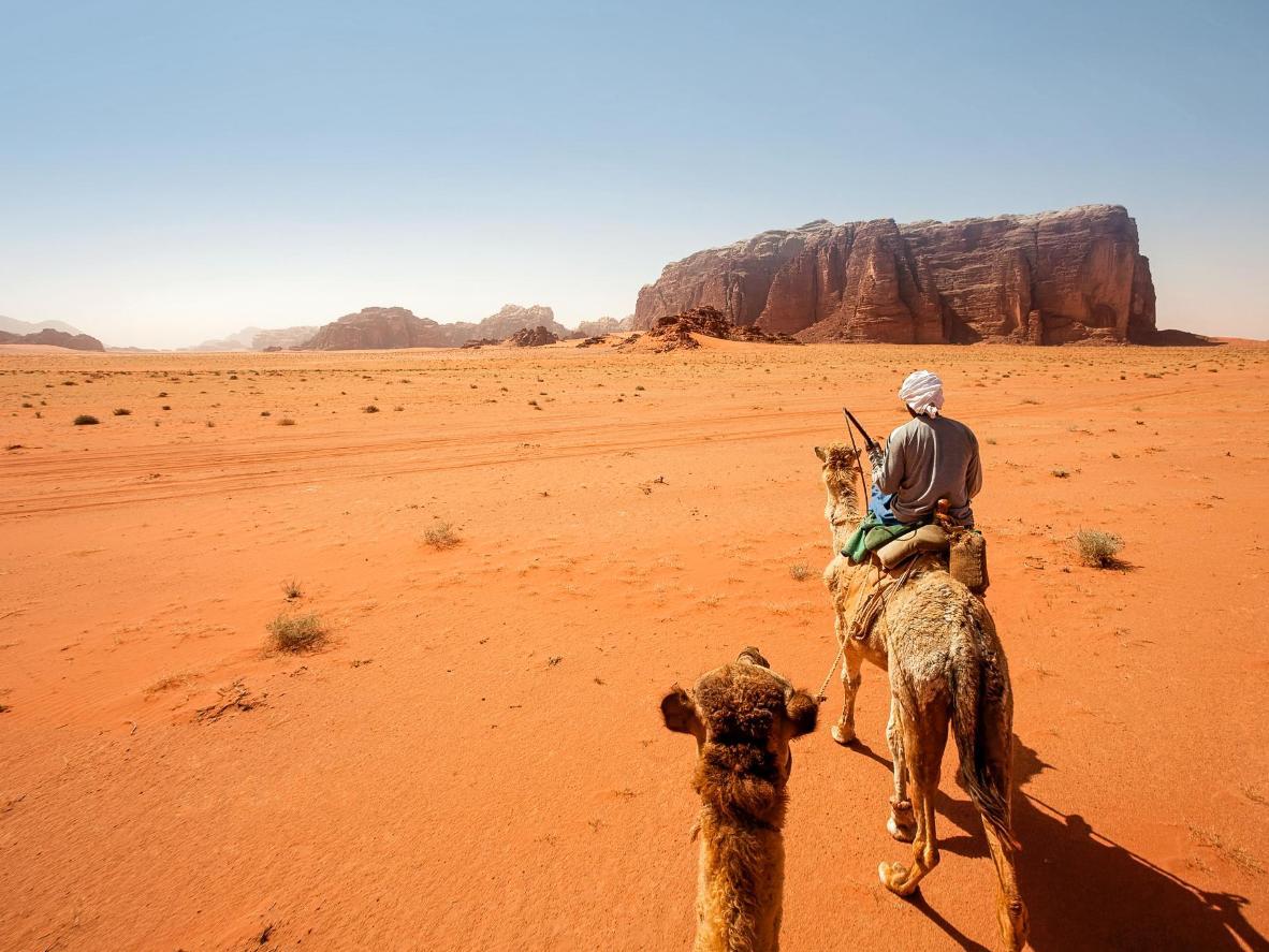 Viaje en camello y acampe bajo las estrellas en el extraordinario desierto del desierto de Wadi Rum