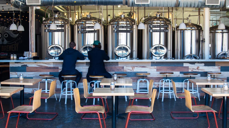 Former autoshop Bandit Brewery swaps carburettors for beer kettles