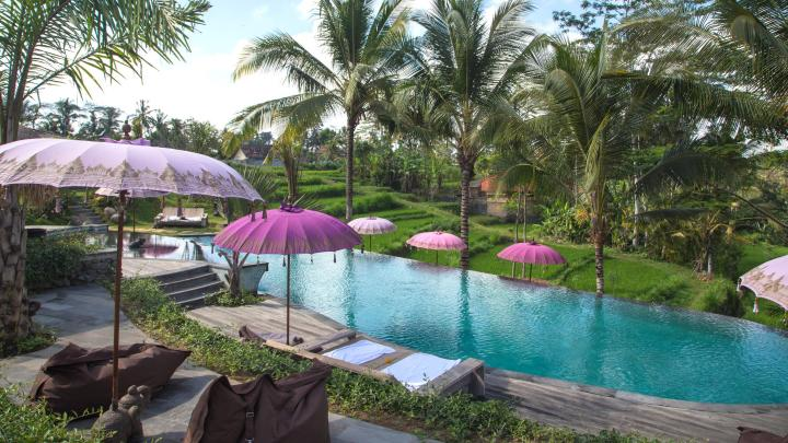 Find the best relaxation in Ubud