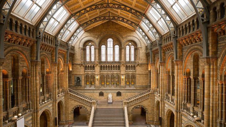 Encuentra el mejor lugar para los museos en Londres