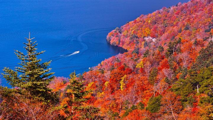 Encuentra el mejor lugar para los paisajes de otoño en Nikko