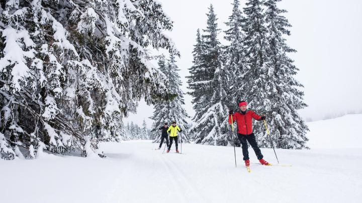 Encuentra el mejor lugar para el esquí de fondo en Leutasch