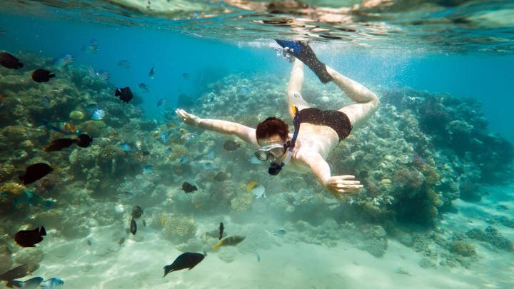 Encuentra el mejor lugar para bucear en arrecifes en San Andrés