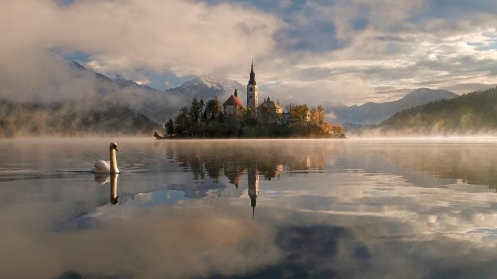Encuentra el mejor lugar para la naturaleza en Bled