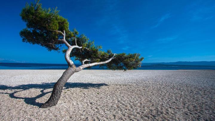 Encuentra el mejor lugar para las playas de guijarros en Bol