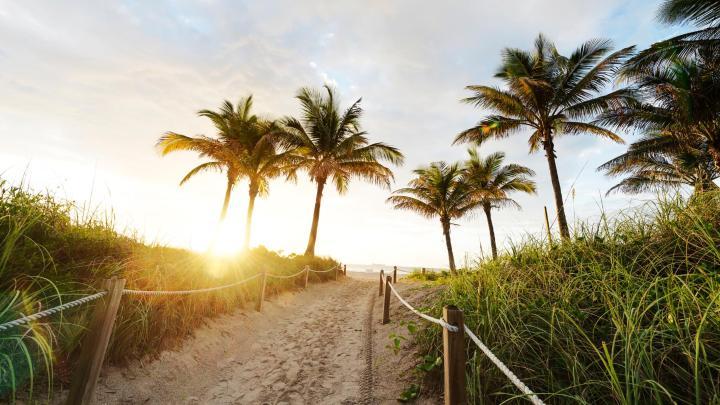 Encuentra el mejor lugar para los días soleados en Miami Beach