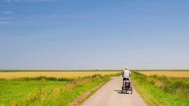 Encuentra el mejor lugar para el ciclismo en Schiermonnikoog