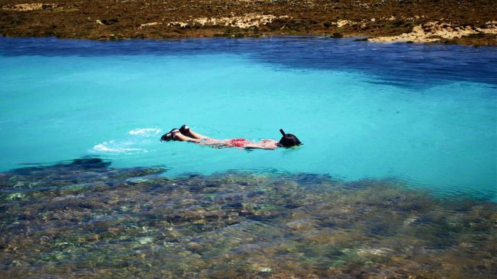 Encuentra el mejor lugar para bucear en arrecifes en Maragogi