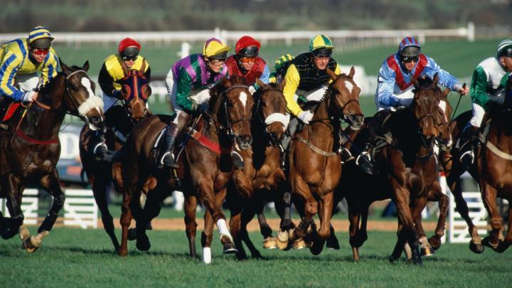 Encuentra el mejor lugar para las carreras de caballos en Haydock