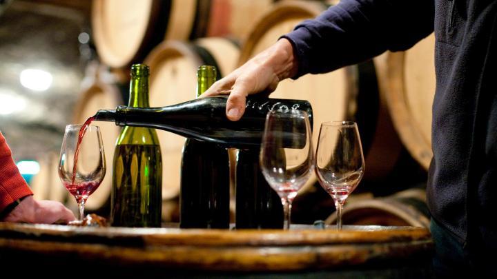 Encuentra el mejor lugar para los viñedos en Saint-Émilion