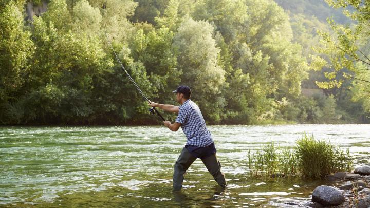 Encuentra el mejor lugar para pescar en ríos en Ballina