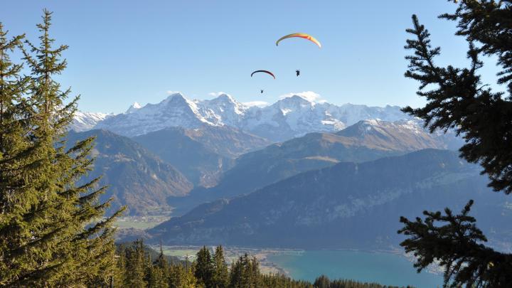 Encuentra el mejor lugar para el parapente en Interlaken
