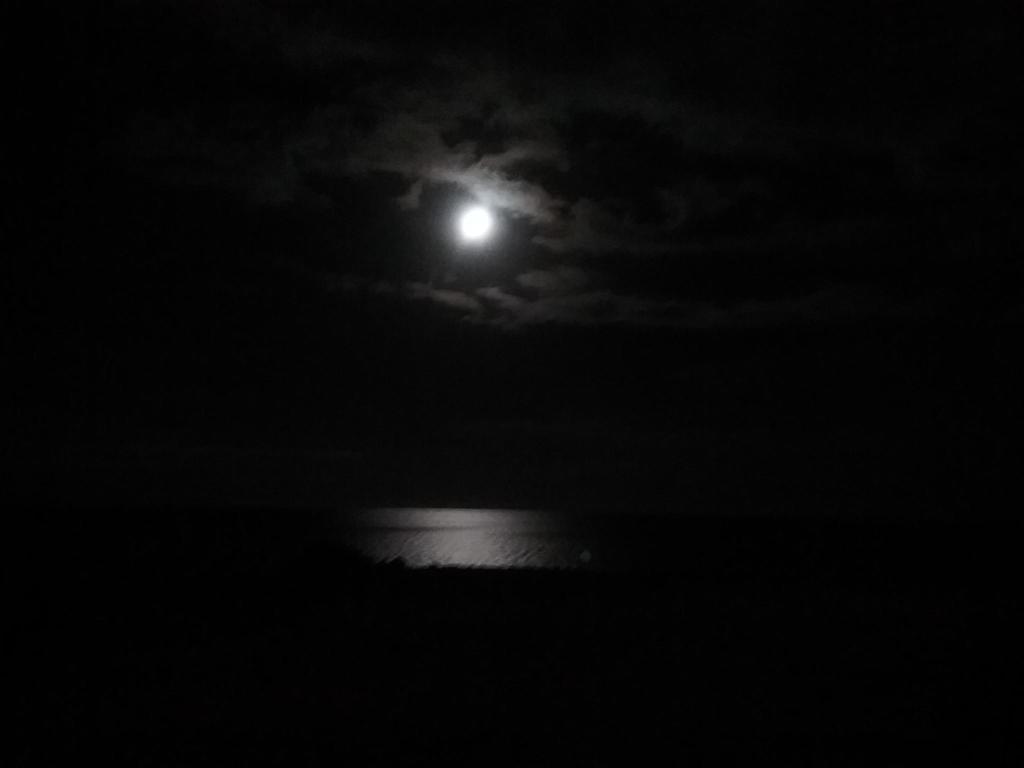 Moonlight spa austell ga