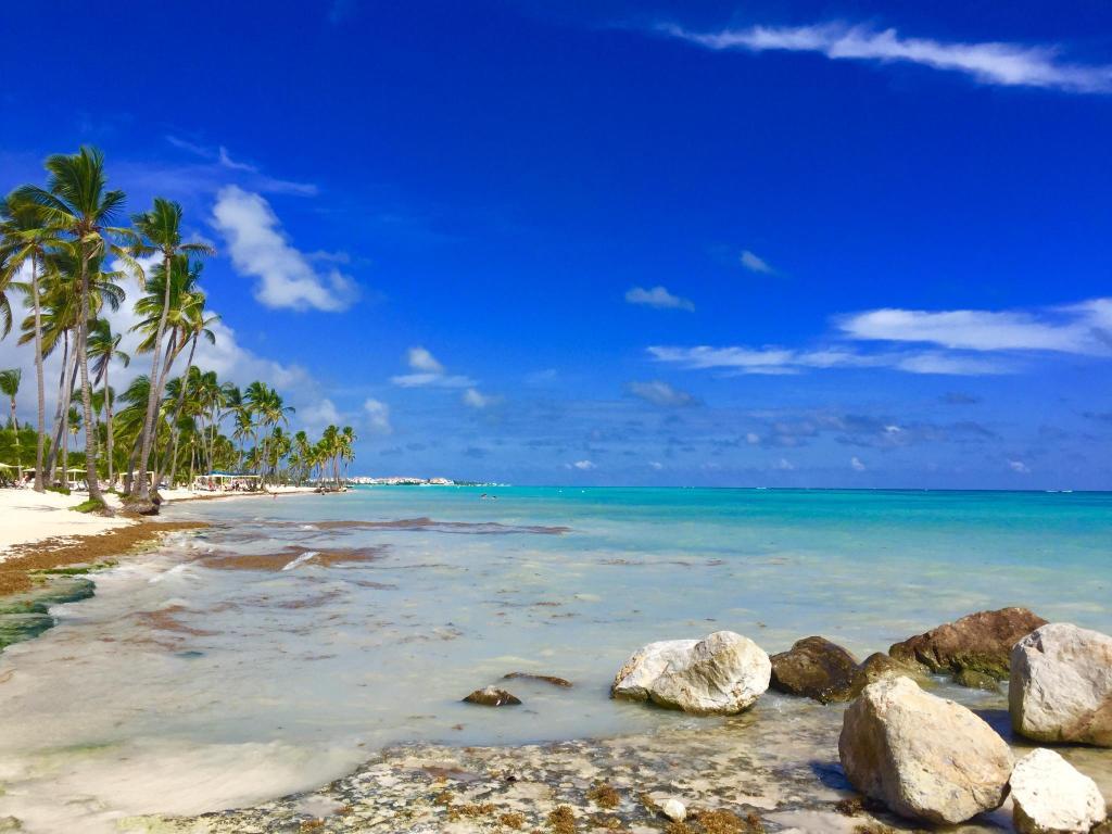 Роскошный отдых в Доминикане! Отличная цена!