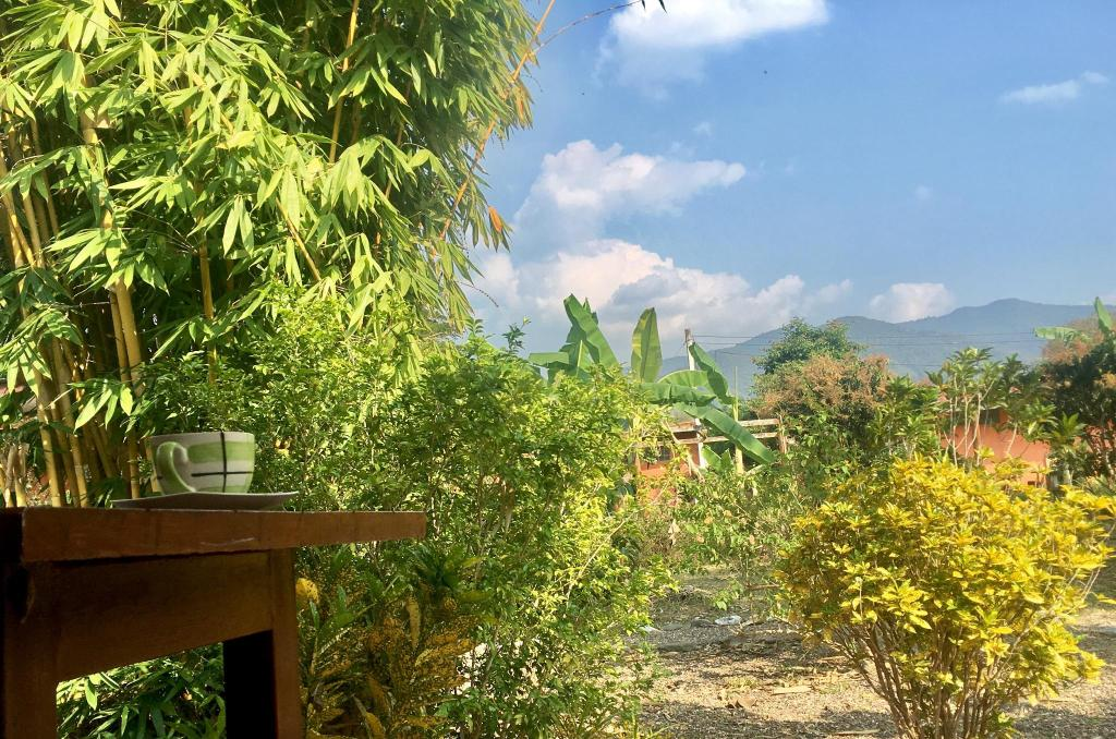 Siam Garden Bungalows and Camping, Thung Chang, Thailand - Booking.com