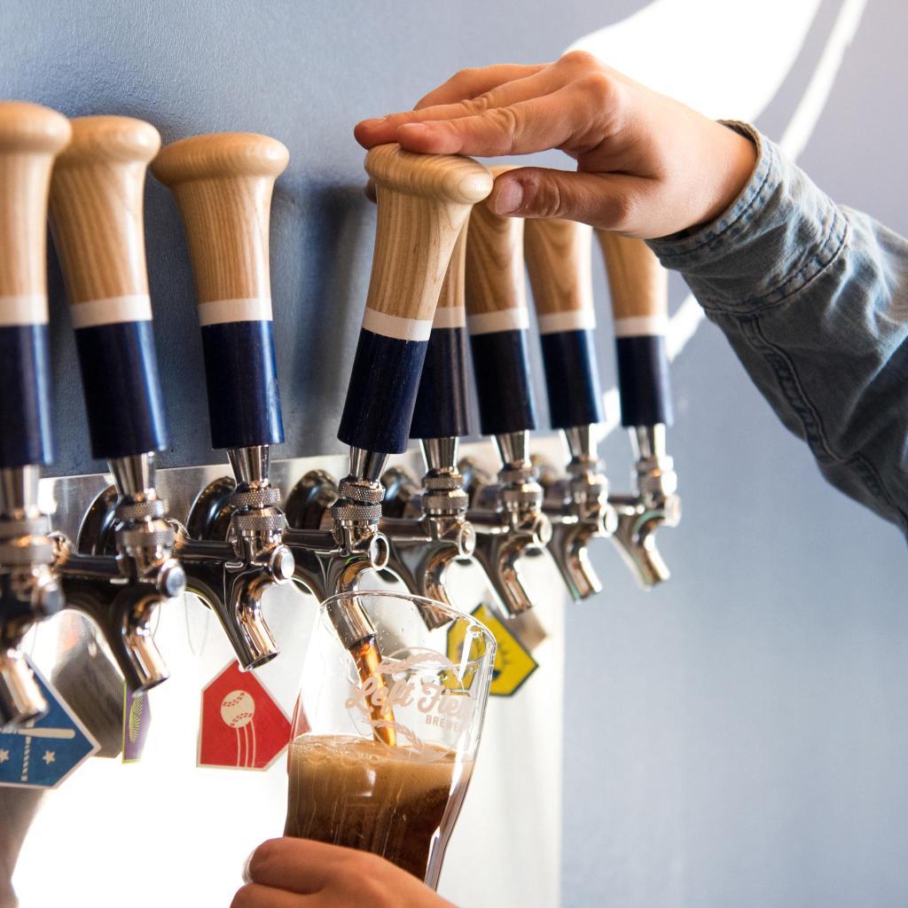 On tap: Maris Pale Ale, Eephus Brown Ale, and Sunlight Park Grapefruit Saison