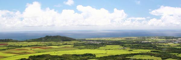 Lihue, Hawaii Hotels