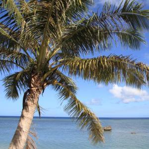 Micronesië