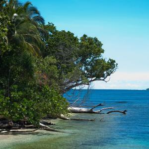 Zālamana salas