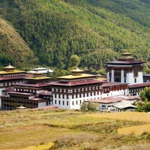 Butāna