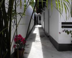 Hotel San Judas Tadeo II