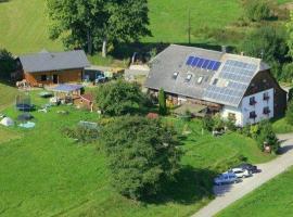 Ferienhof-Gerda-Ferienwohnung-Storchennest, Oberkirnach