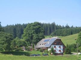 Ferienhof-Gerda-Ferienwohnung-Talblick, Oberkirnach