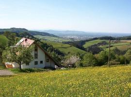 Ferienwohnung-Dorfblick, Horben