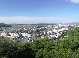 Pousada Panoramica, Târgu-Mureş