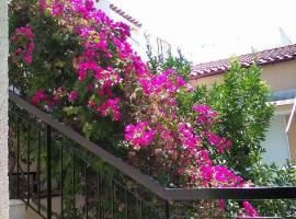Aegina's Flowers house, Aegina Town