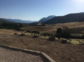 Ferme de Minora, Sarragia